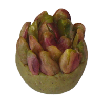 Machmoum Pistachio